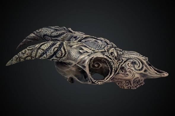 Goat Skull By Jody Garrett Was Created In Zbrush The Professional Version Of Free Sculpting