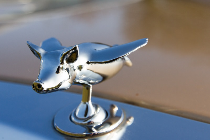 Polished Chrome-plating Brass