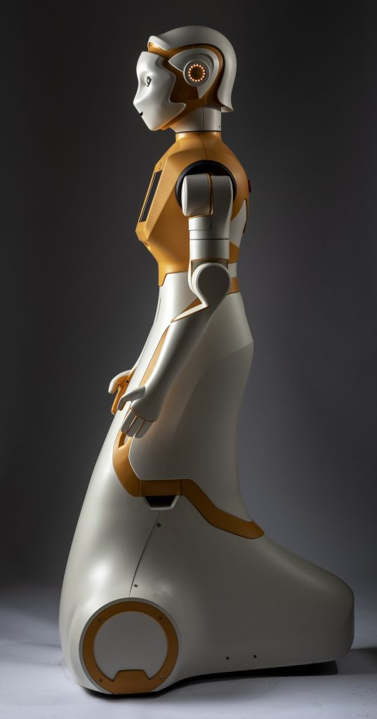 Picture of social robot in full size from the side view