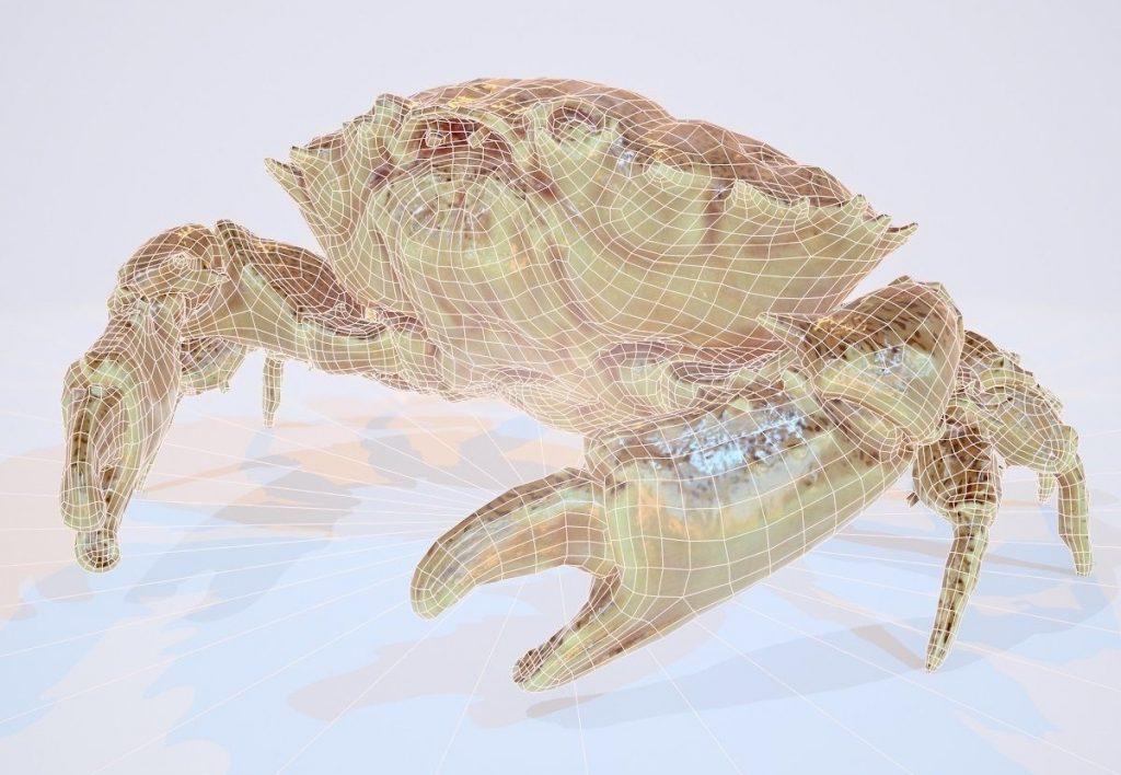 Erfreut Beispielzusammenfassung Für 3d Modellierer Galerie ...