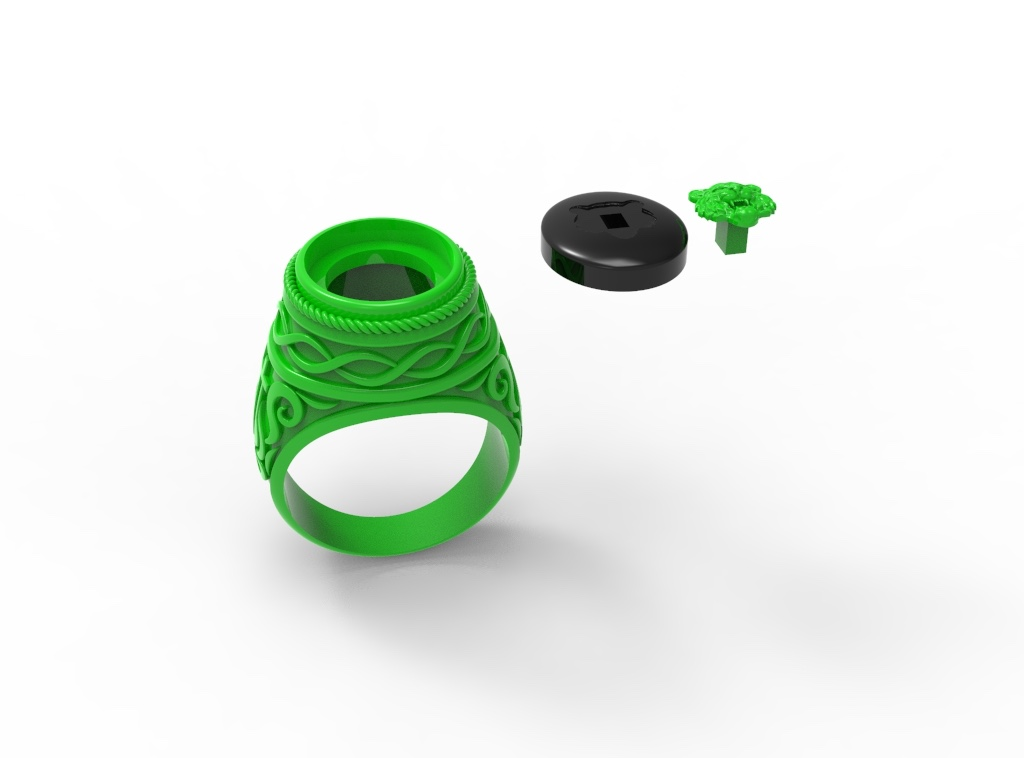 Ring Assemply
